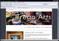 Trego Arts
